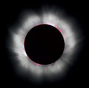 19990811 Corona Wikipedia