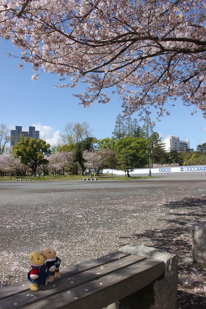 ソメイヨシノを見上げる 駿府城公園 200414