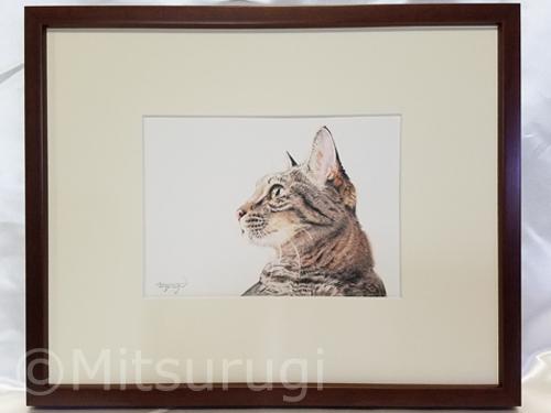 絵 イラスト ポートレート 肖像画 猫 キジ猫