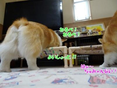 200510②