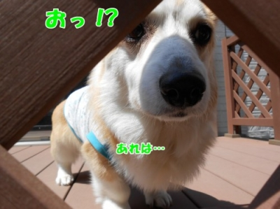 200516②