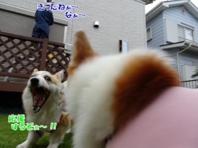 2007005③
