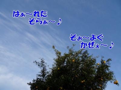 201117①