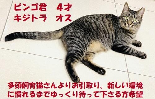 IMG_0524_20210101201208f88.jpg