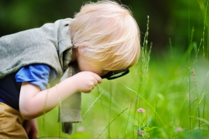 好奇心と探究心