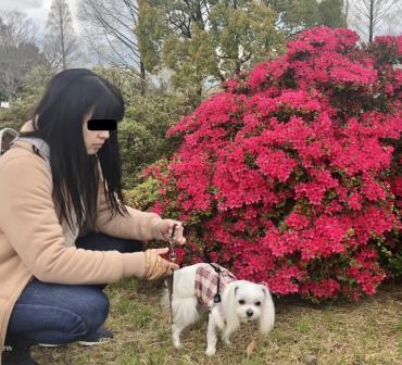 花に興味なし