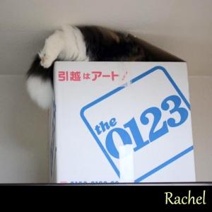 Rachel07.jpg