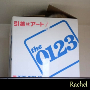 Rachel08.jpg