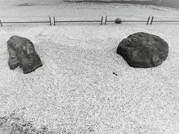 15.4.3 大久保浄水場の桜  (21)