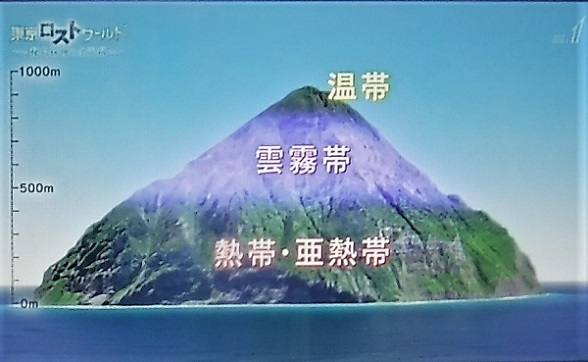 20.3.27 BSTV東京ロストワールド (49)