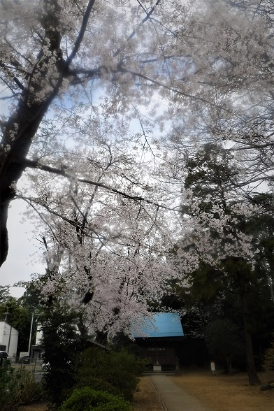 20.3.27 BSTV東京ロストワールド (70)