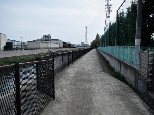 6 20.4.15 鈴木医院と散歩  (26)