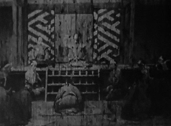 12 20.6.12 調整池のトンボほか映画「雷門大火」「福寿草」 (26)