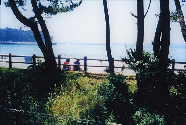 6 スキャン_20200614 - コピー (7)