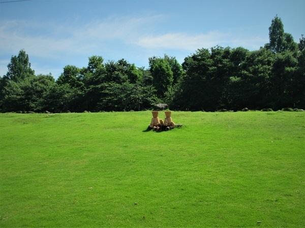 1 20.6.17 リハリビ歩行花の丘公園&「北コース (12)