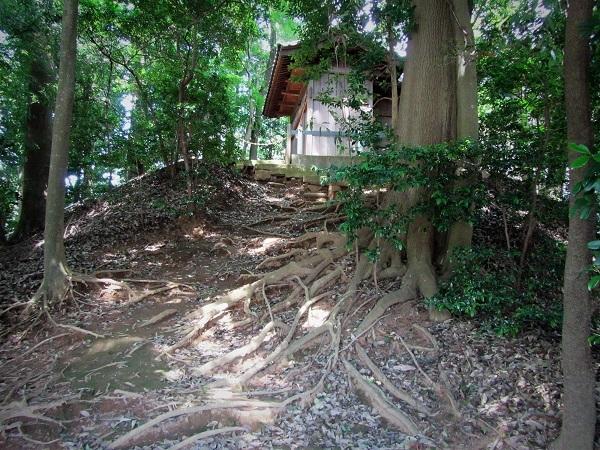 4 20.6.17 リハリビ歩行花の丘公園&「北コース (159)