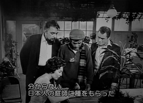 20.7.4 映画「ブルグ劇場」「リトル・ショップ・ホラーズ」 (3)