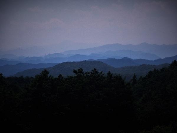3 20.8.5 ハイク宿谷の滝~物見山 (65)