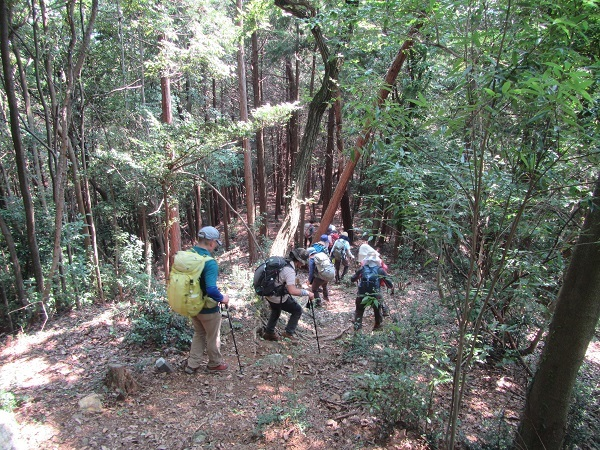 4 20.8.5 ハイク宿谷の滝~物見山 (64)