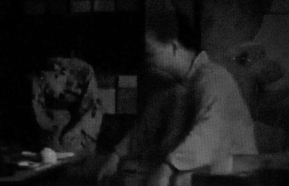5 20.8.7 映画「或る夜の殿様」「故郷」「鬼火」 (3)