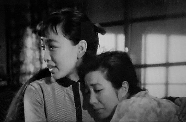 20.8.10 セミ。映画「風船」「愛から愛へ」 (63)