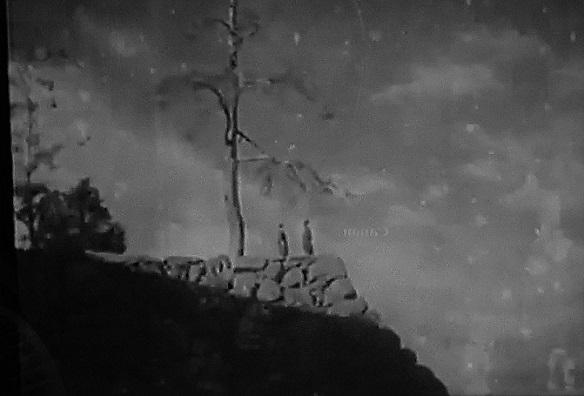 20.8.13 虹、映画「荒城の月、「熱砂の白蘭」 (48)