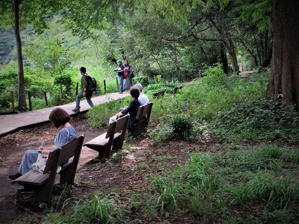 12 20.9.15 スケッチハイク石神井公園 (105)