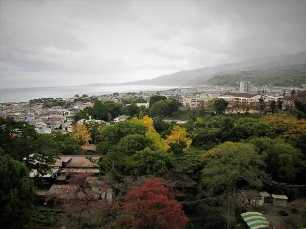 6 20.11.20  薬師池と七国山、箱根 つつじ荘 (295)