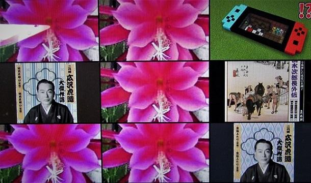 4 20。11.28 獅子(鬼)柚子、ユリ満開、映画「肉弾鬼中隊」 (70)
