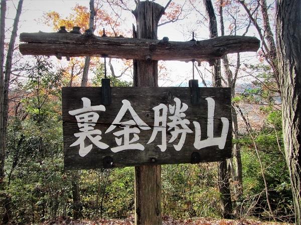 5 20.12.19 金勝山・6 官の倉山 (121)