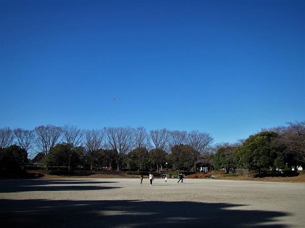 1 20.1.4 孫たちと三橋運動公園。映画「陸軍」「関の孫六」 (20)