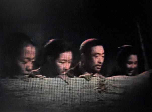 3 20.1.1 映画「馬」 (38)