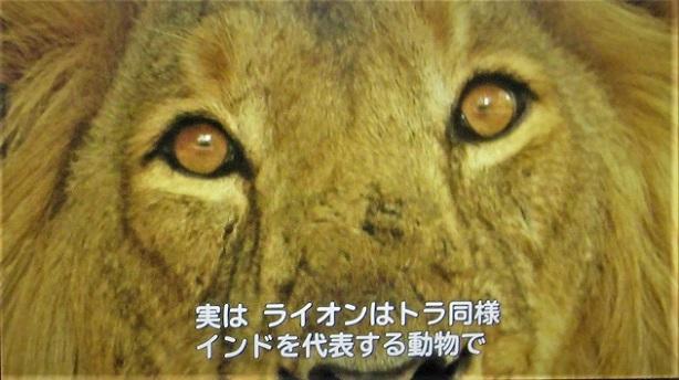 4 21.2.4 見沼田んぼ。 映画「インド 1 (59)