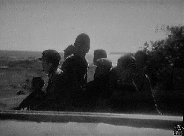 13 21.2.14 映画「キューバの恋人」「蜂の巣の子供たち」花  (41)