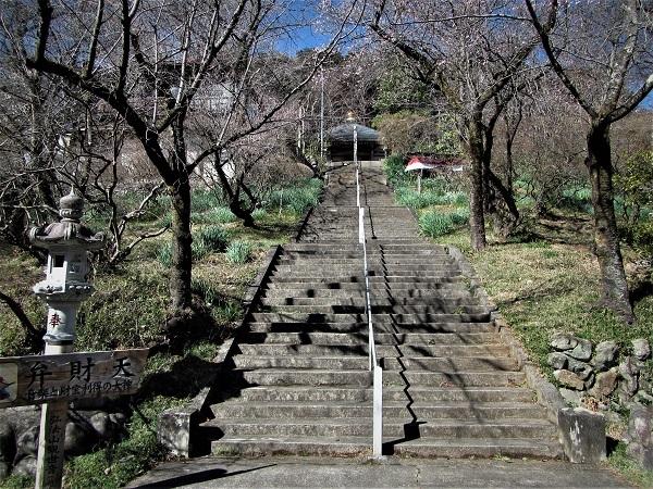 5 21.2.16 弓立山、弘法山、越生 (106)