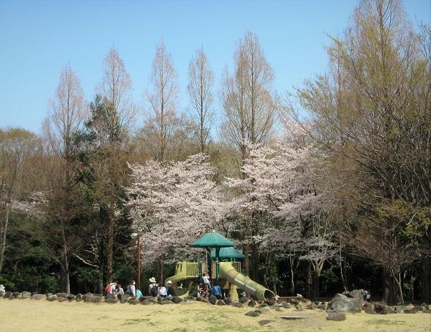 9 遊具 21.3.26 🌸花の丘公園  (23)