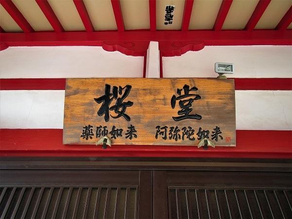 3 21.4.1 絵・椿。桜堂の🌸、映画「わが谷あ緑なりき」、「鐘の鳴る丘❶」  (129)