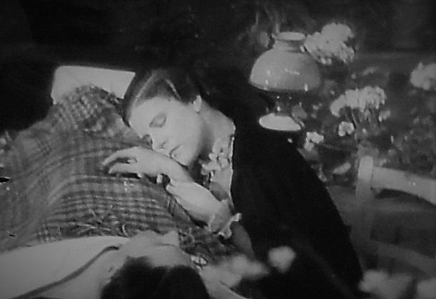 ❸21.4.2 花壇。サクラ。映画「たそがれのウイーン」維納   (94)