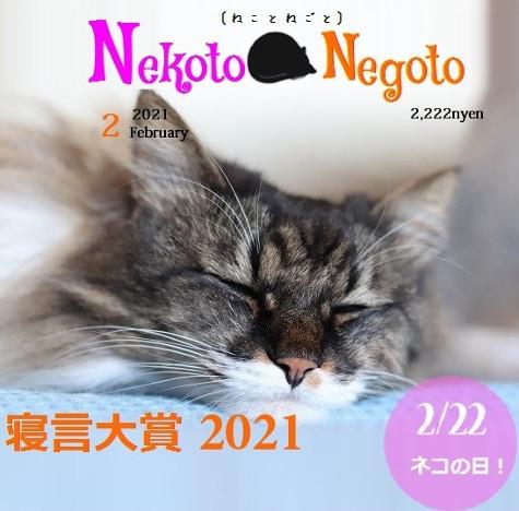 2021022420560604b.jpg
