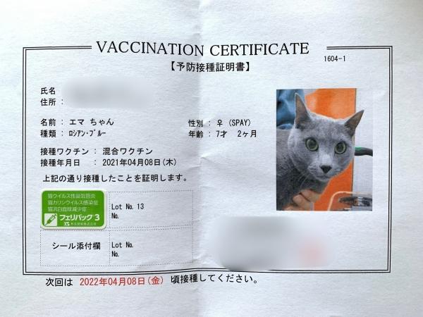 猫 ワクチン 種類