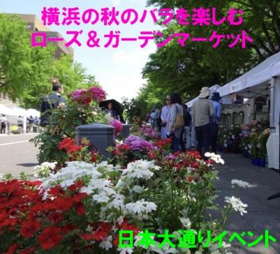0-薔薇マーケット1