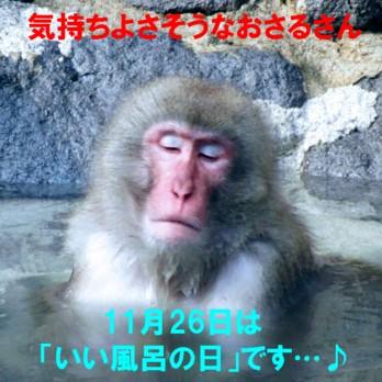 0-さる風呂1