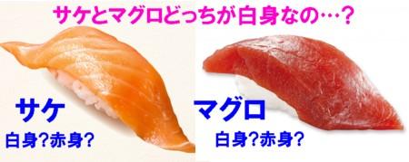 0-サケ1