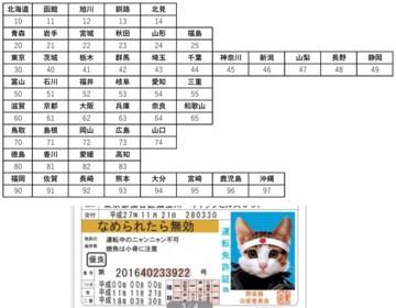0-免許証1