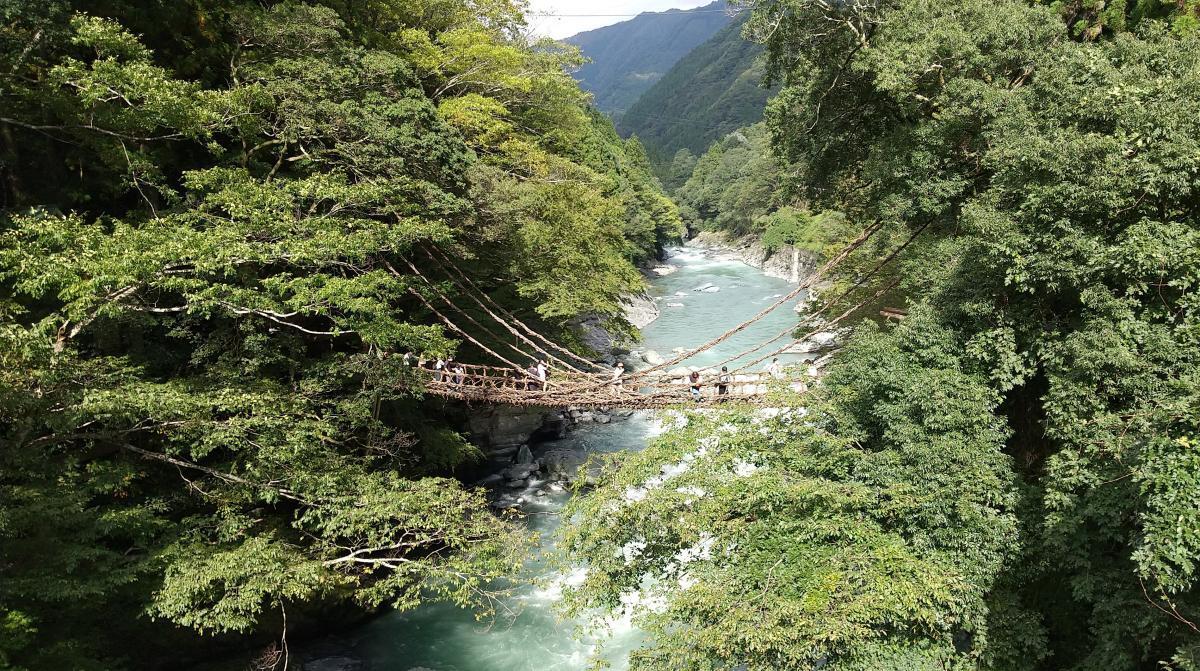 祖谷のかずら橋 遠景