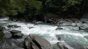 祖谷のかずら橋 祖谷渓1