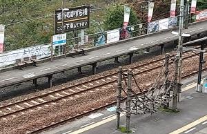 大歩危駅 ミニチュアかずら橋 近景