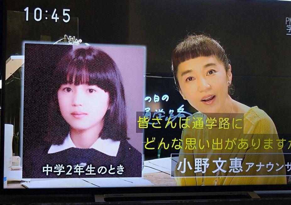 小野 文恵 アナウンサー nhk