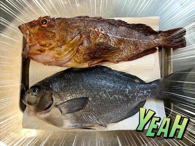 清蒸鮮魚1