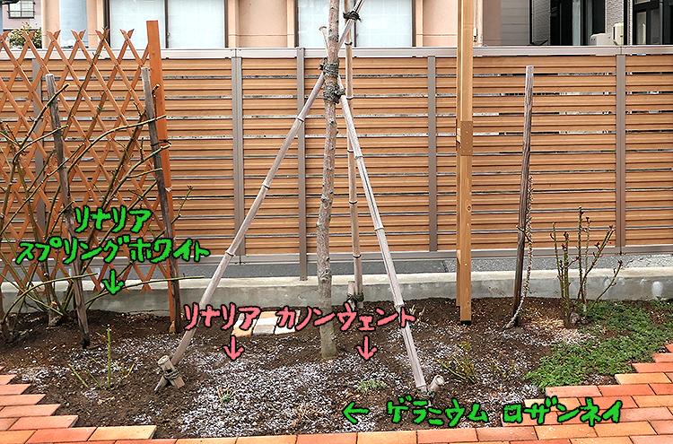 P1056351_20200323080807d25.jpg